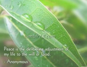 Peace-is-the-deliberate-adjustment-of-my-life-to-the-will-of-God.